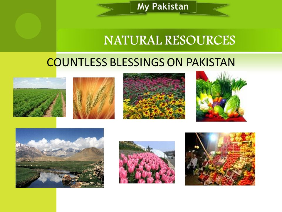 COUNTLESS BLESSINGS ON PAKISTAN