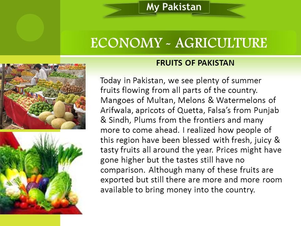 ECONOMY - AGRICULTURE My Pakistan