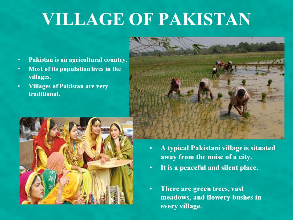 VILLAGE OF PAKISTAN Pakistan is an agricultural country. Most of its population lives in the villages.