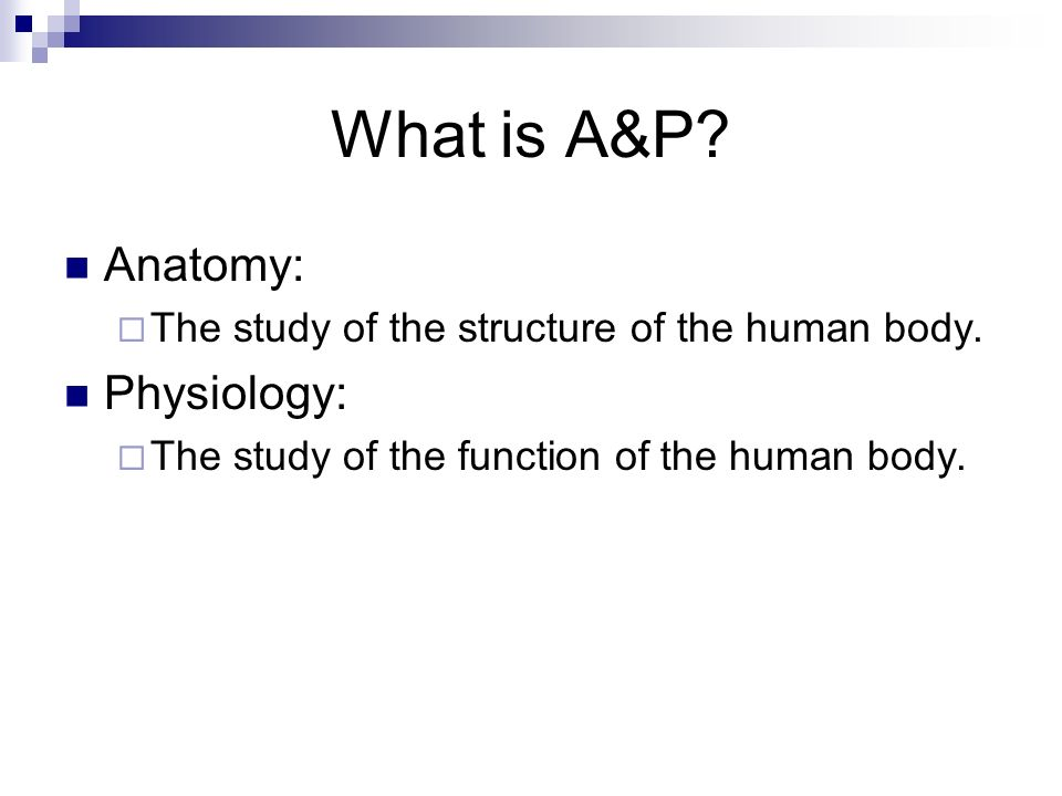 Major Concepts of Anatomy and Physiology - ppt video online download