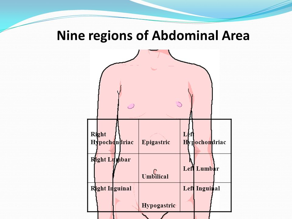 Nine regions of Abdominal Area