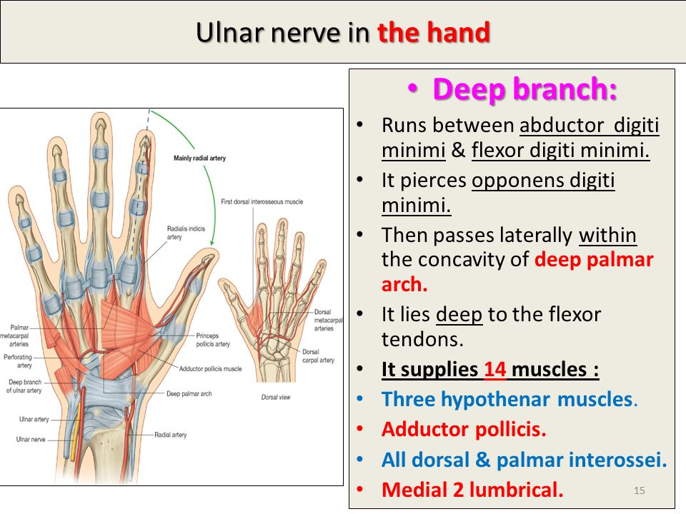 By Dr. Vohra & Dr. Sanaa Al-Shaarawy - ppt video online download