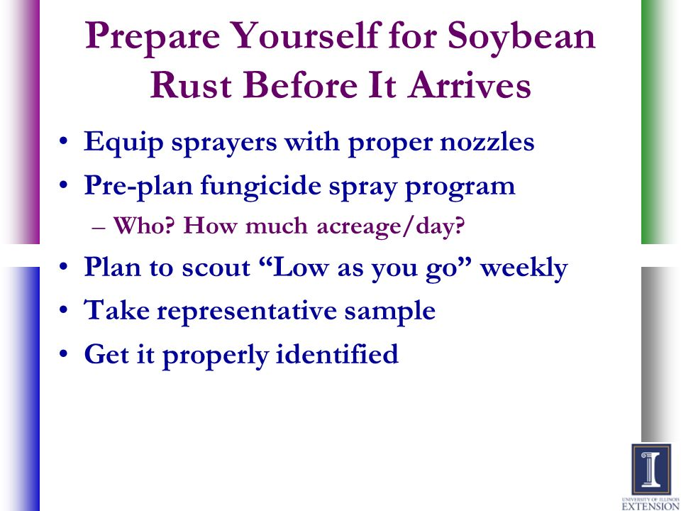 Prepare Yourself for Soybean Rust Before It Arrives