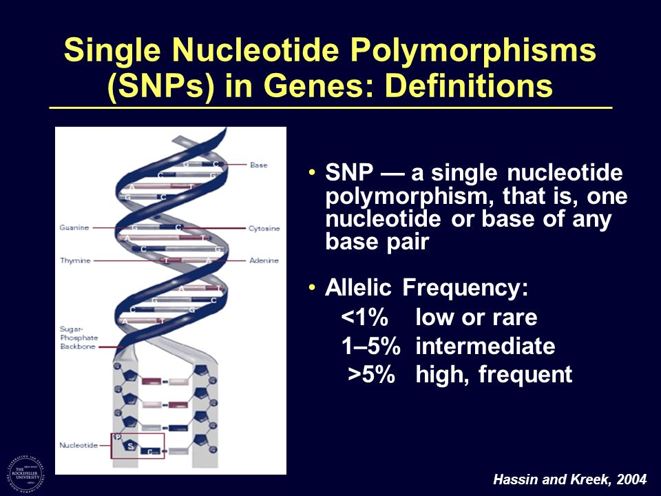 Single Nucleotide Polymorphisms (SNPs) in Genes: Definitions