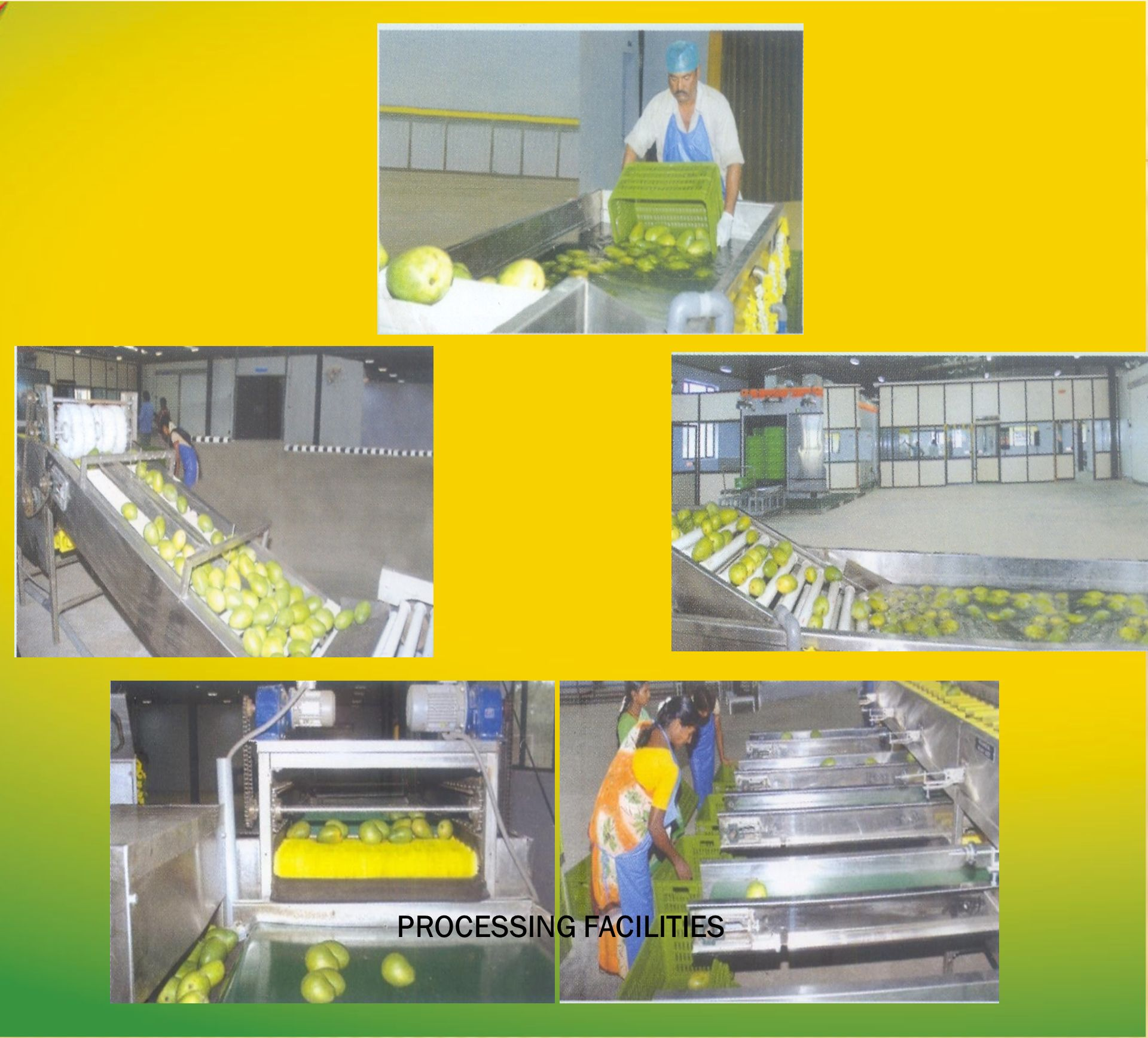 PROCESSING FACILITIES