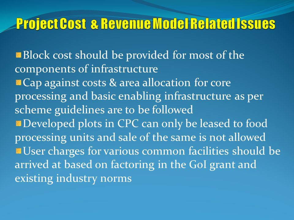 Project Cost & Revenue Model Related Issues