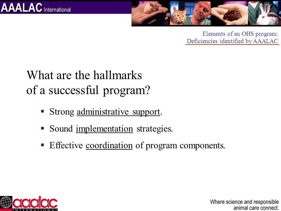 What are the hallmarks of a successful program
