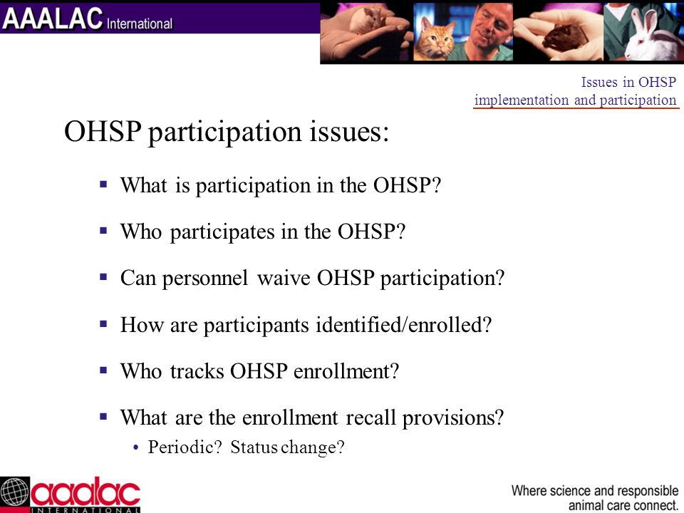 OHSP participation issues: