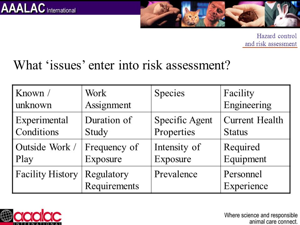 What 'issues' enter into risk assessment
