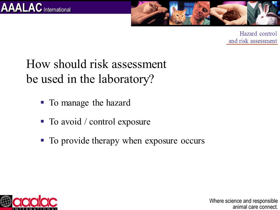 How should risk assessment be used in the laboratory