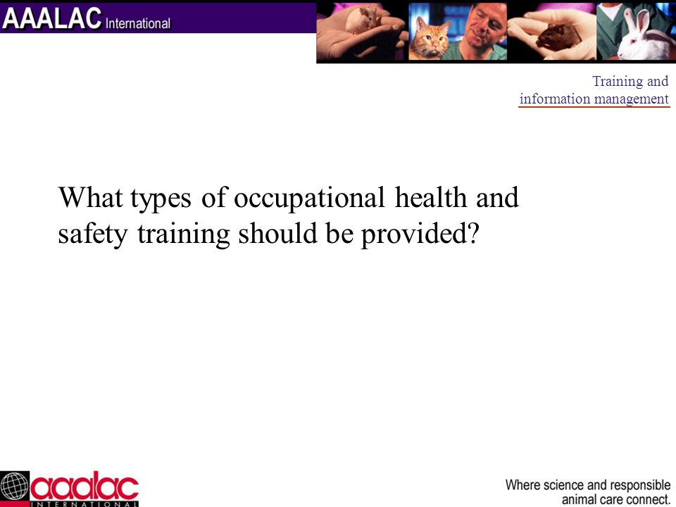 What types of occupational health and