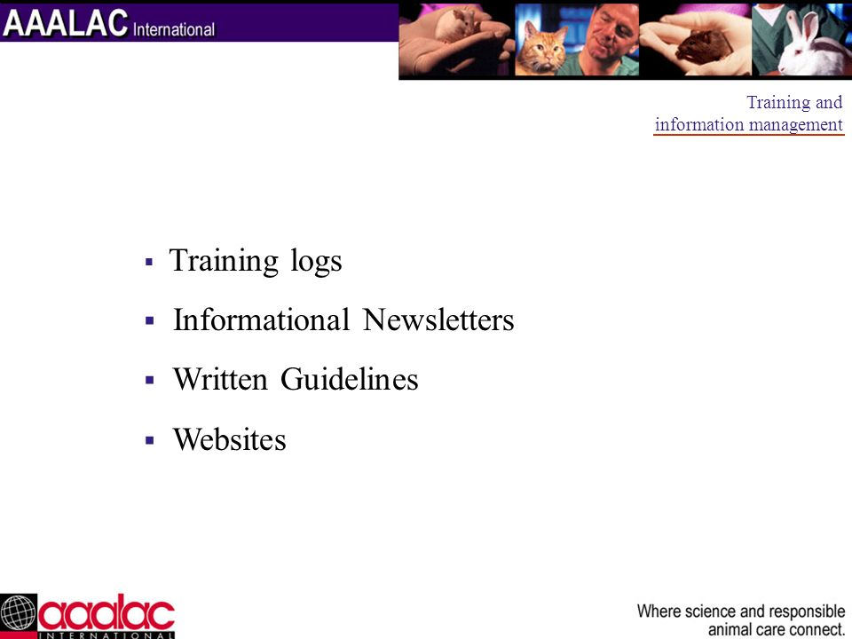 Informational Newsletters Written Guidelines Websites
