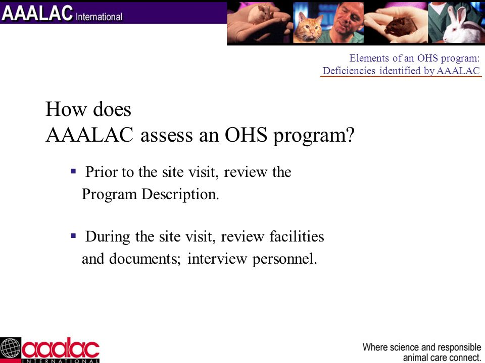 How does AAALAC assess an OHS program