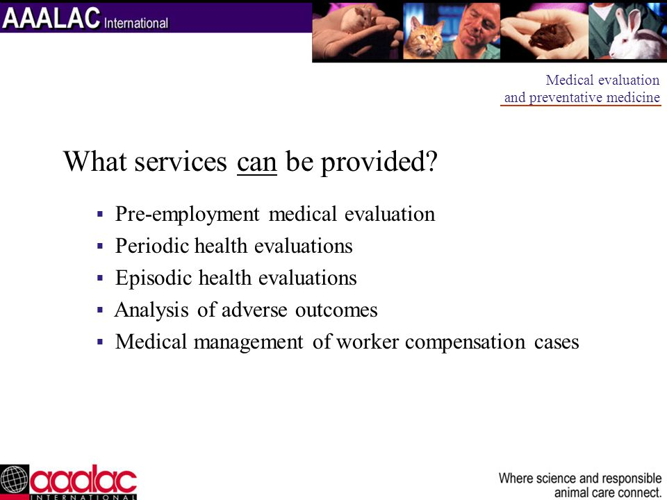 What services can be provided
