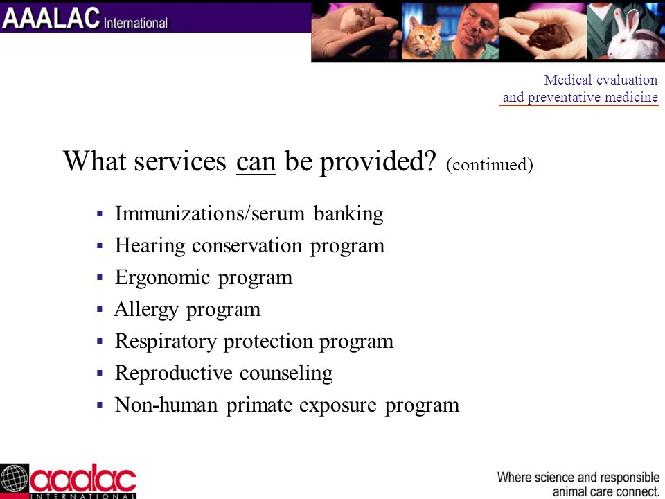 What services can be provided (continued)