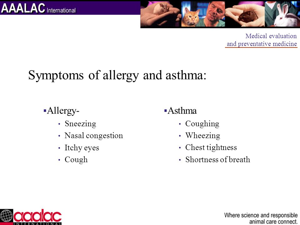 Symptoms of allergy and asthma: