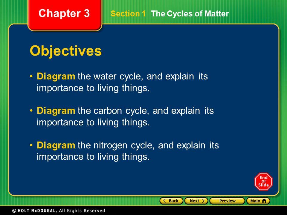 Preview section 1 the cycles of matter section 2 ecological diagram the nitrogen cycle and explain its importance to living things section 1 the cycles of matter ccuart Choice Image