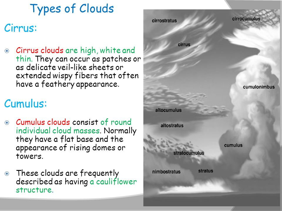 Types of Clouds Cirrus: Cumulus: