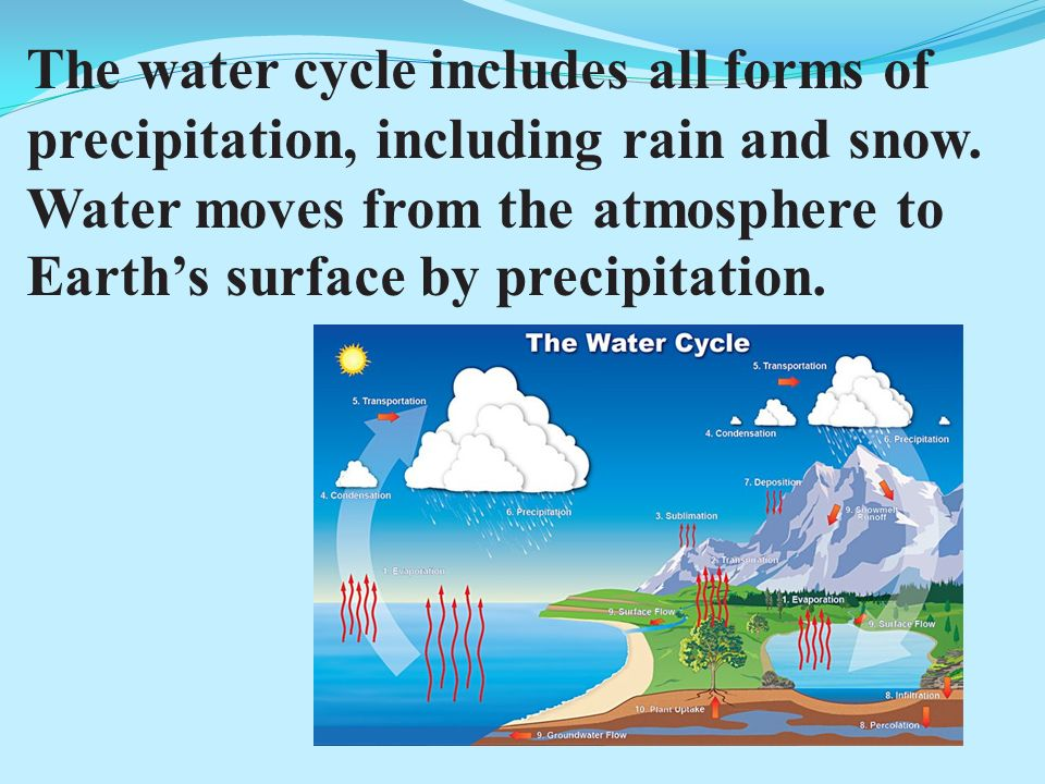 The water cycle includes all forms of precipitation, including rain and snow.