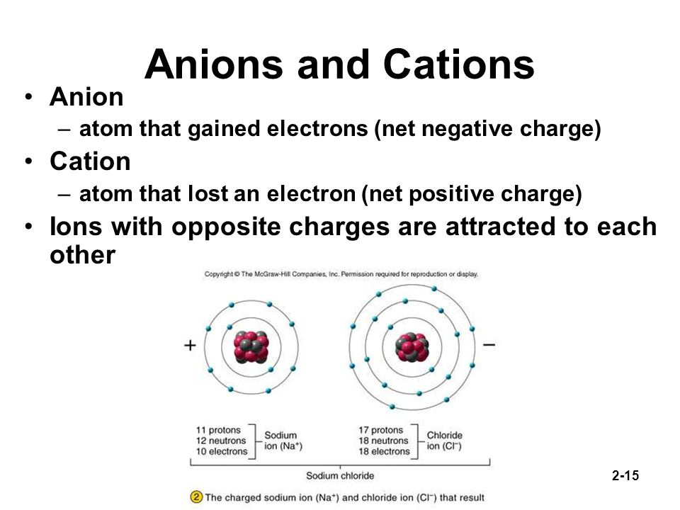 Anions and Cations Anion Cation