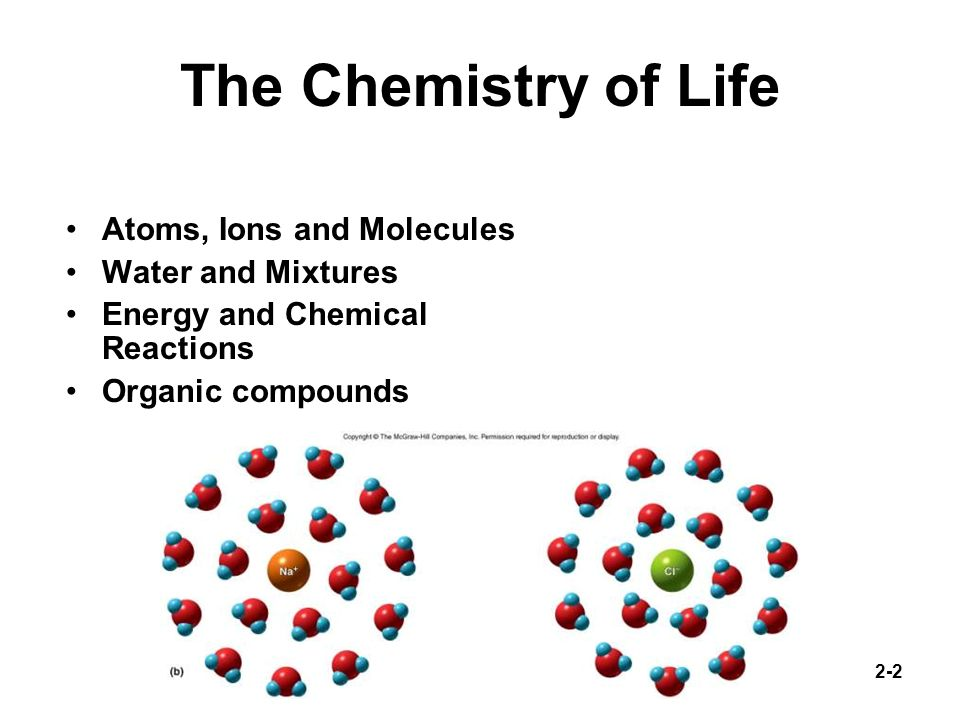 The Chemistry of Life Atoms, Ions and Molecules Water and Mixtures