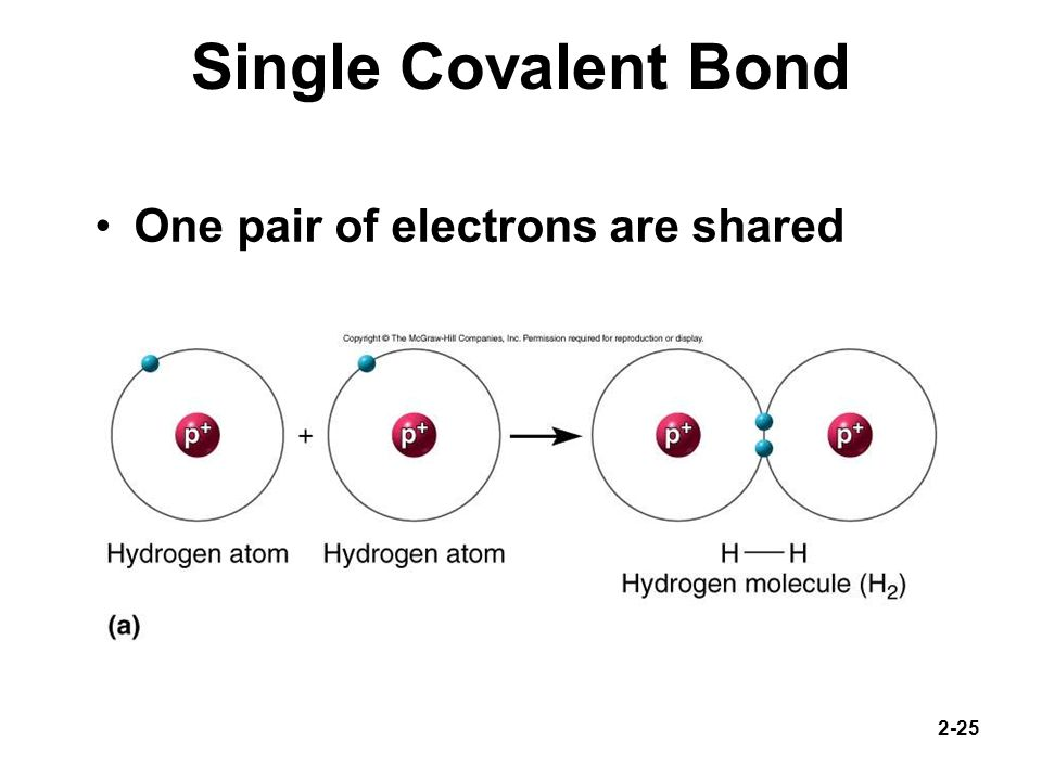 Single Covalent Bond One pair of electrons are shared