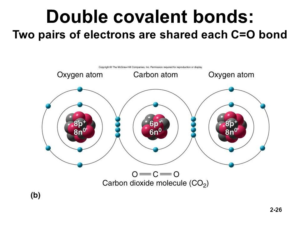 Double covalent bonds: Two pairs of electrons are shared each C=O bond