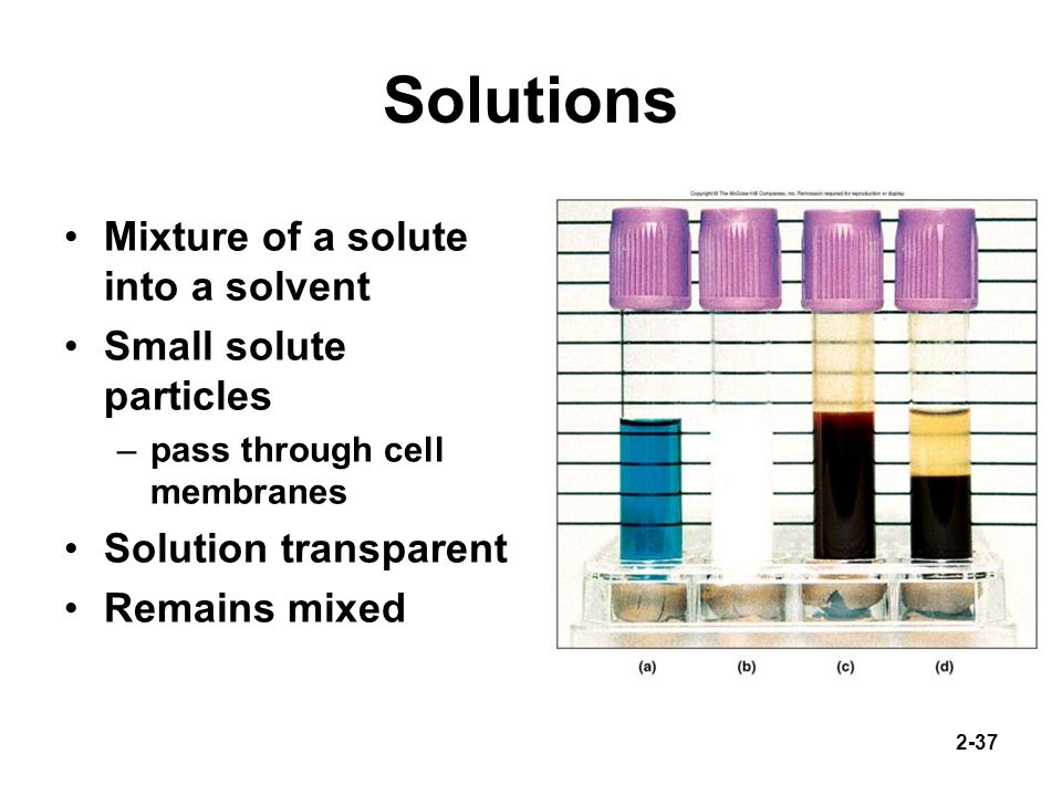 Solutions Mixture of a solute into a solvent Small solute particles