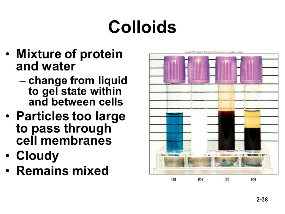 Colloids Mixture of protein and water