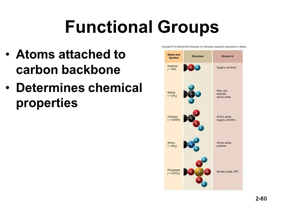 Functional Groups Atoms attached to carbon backbone