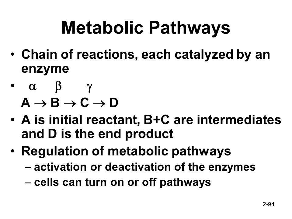 Metabolic Pathways Chain of reactions, each catalyzed by an enzyme