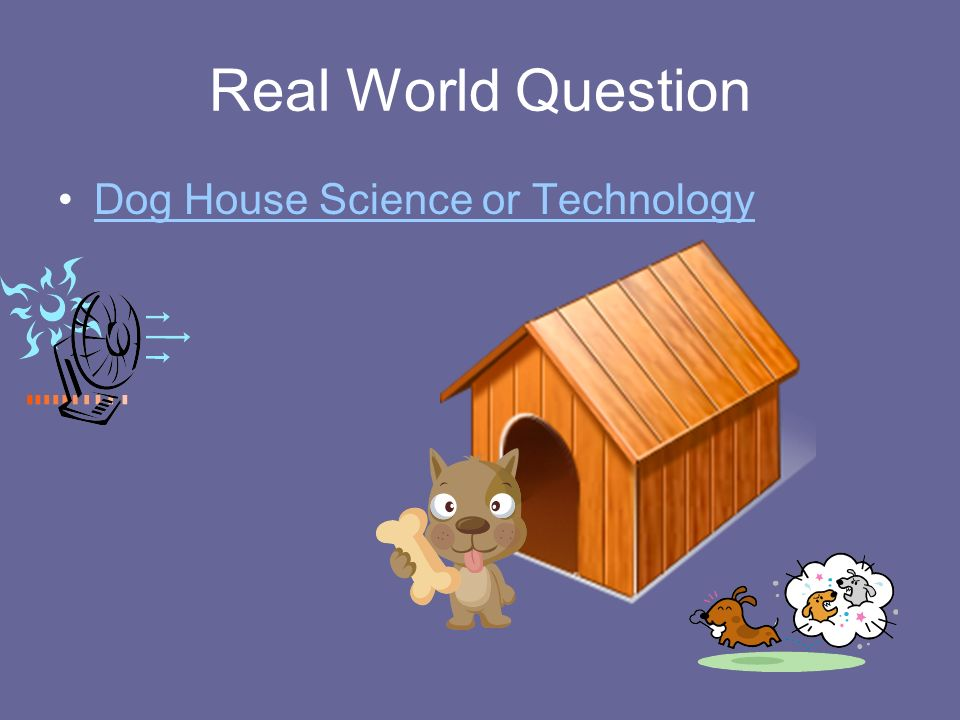 Real World Question Dog House Science or Technology
