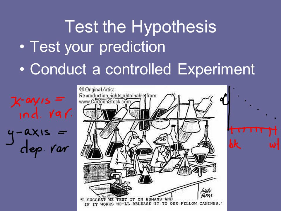 Test the Hypothesis Test your prediction
