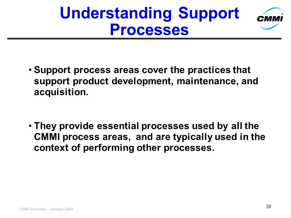Understanding Support Processes
