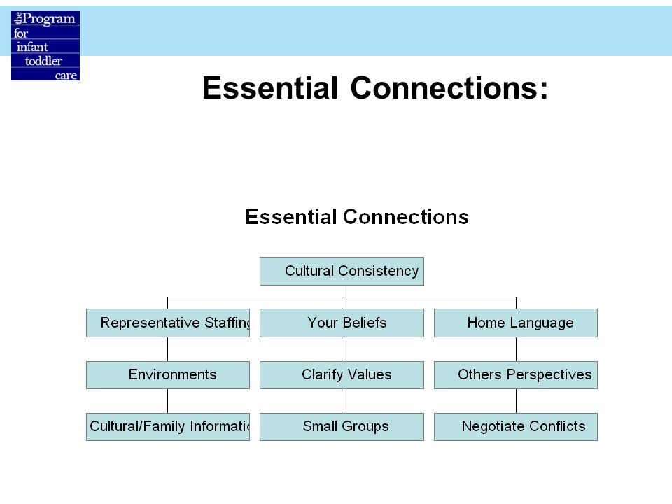 Essential Connections: