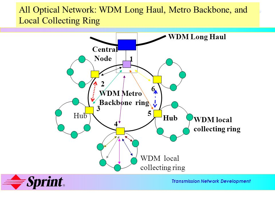 All Optical Network: WDM Long Haul, Metro Backbone, and Local Collecting Ring