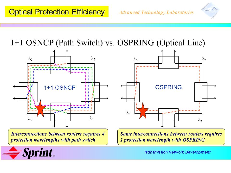 Optical Protection Efficiency