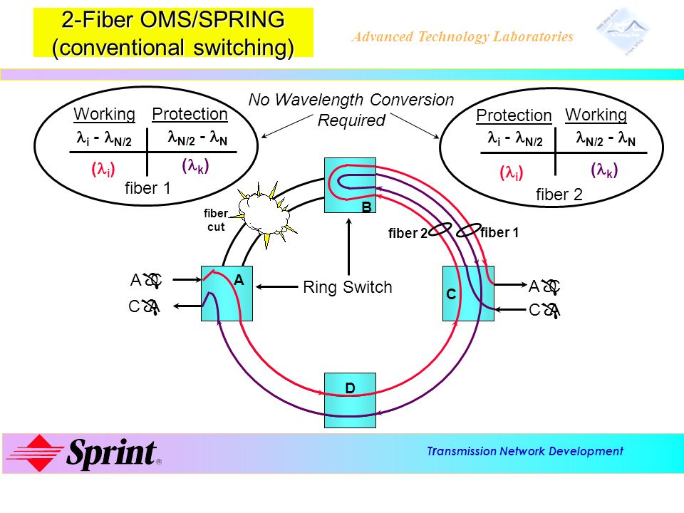 2-Fiber OMS/SPRING (conventional switching)