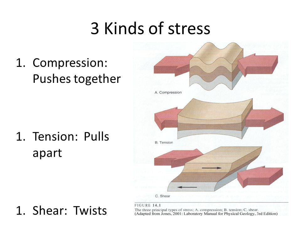 3 Kinds of stress Compression: Pushes together Tension: Pulls apart