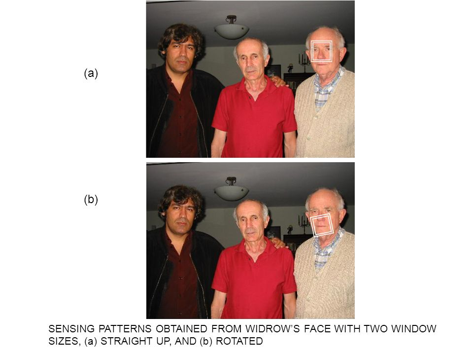 (a) (b) SENSING PATTERNS OBTAINED FROM WIDROW'S FACE WITH TWO WINDOW SIZES, (a) STRAIGHT UP, AND (b) ROTATED.