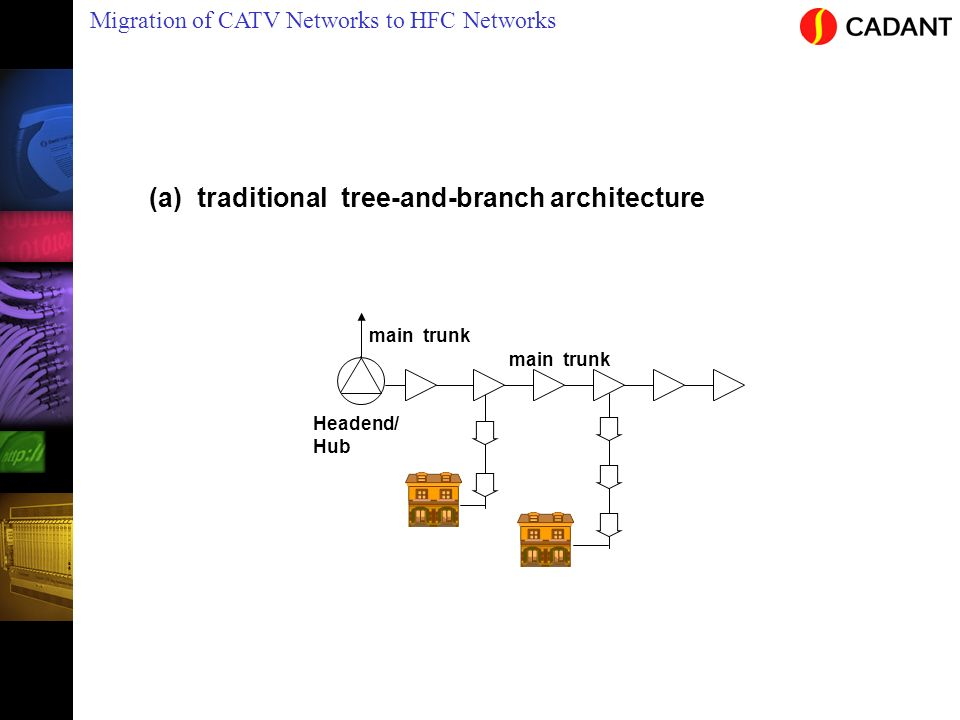 (a) traditional tree-and-branch architecture