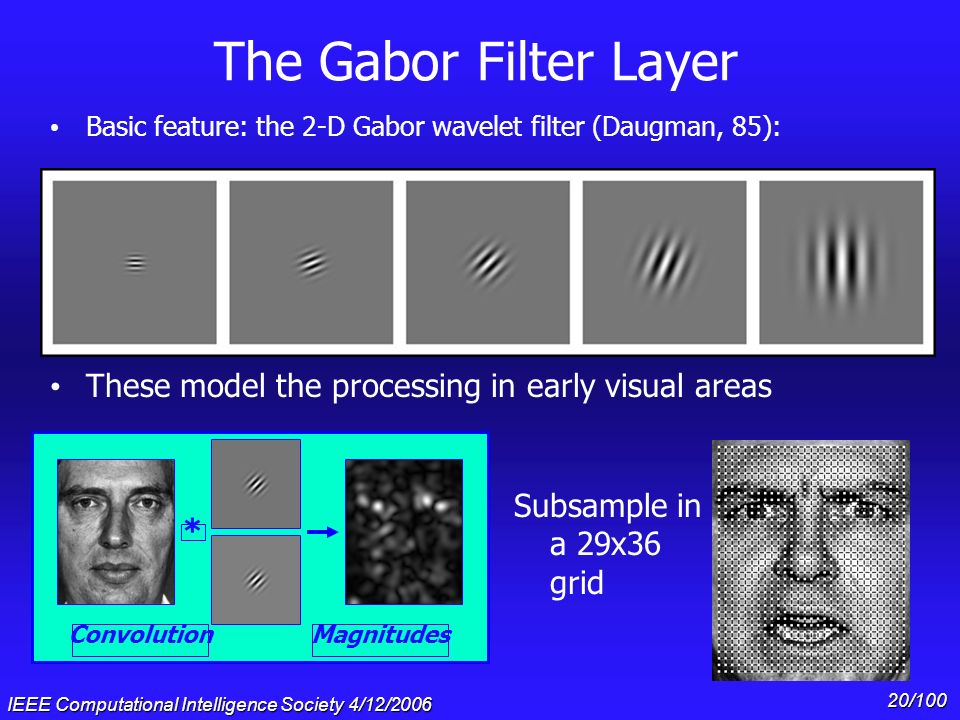 The Gabor Filter Layer Basic feature: the 2-D Gabor wavelet filter (Daugman, 85): These model the processing in early visual areas.