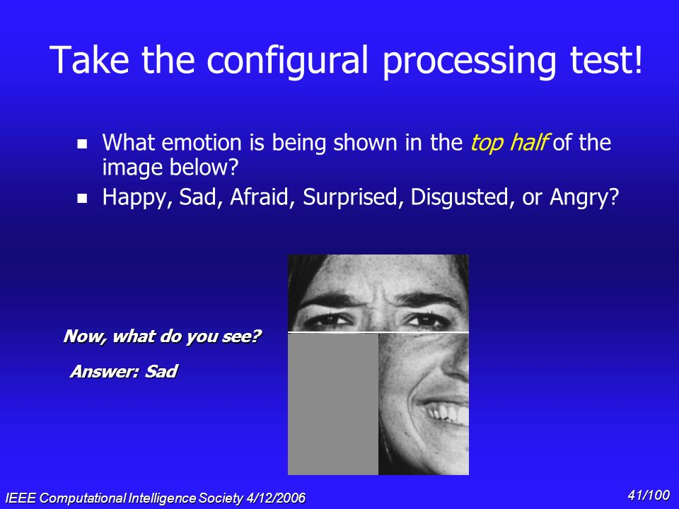Take the configural processing test!