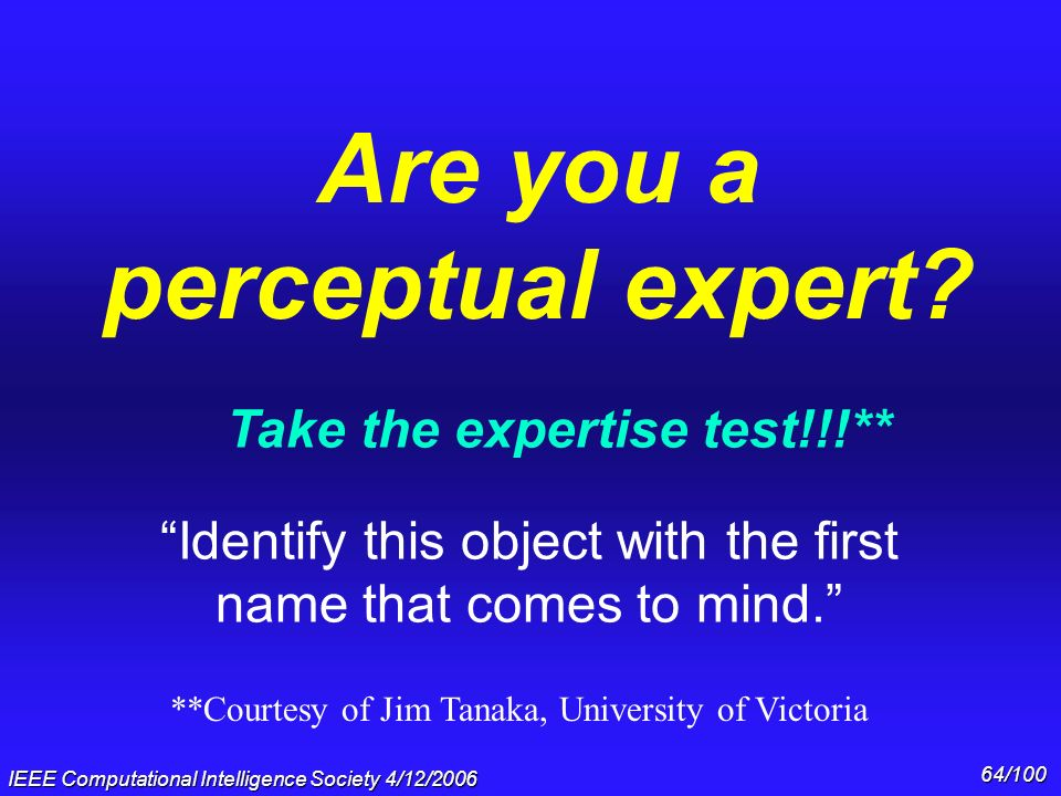 Are you a perceptual expert