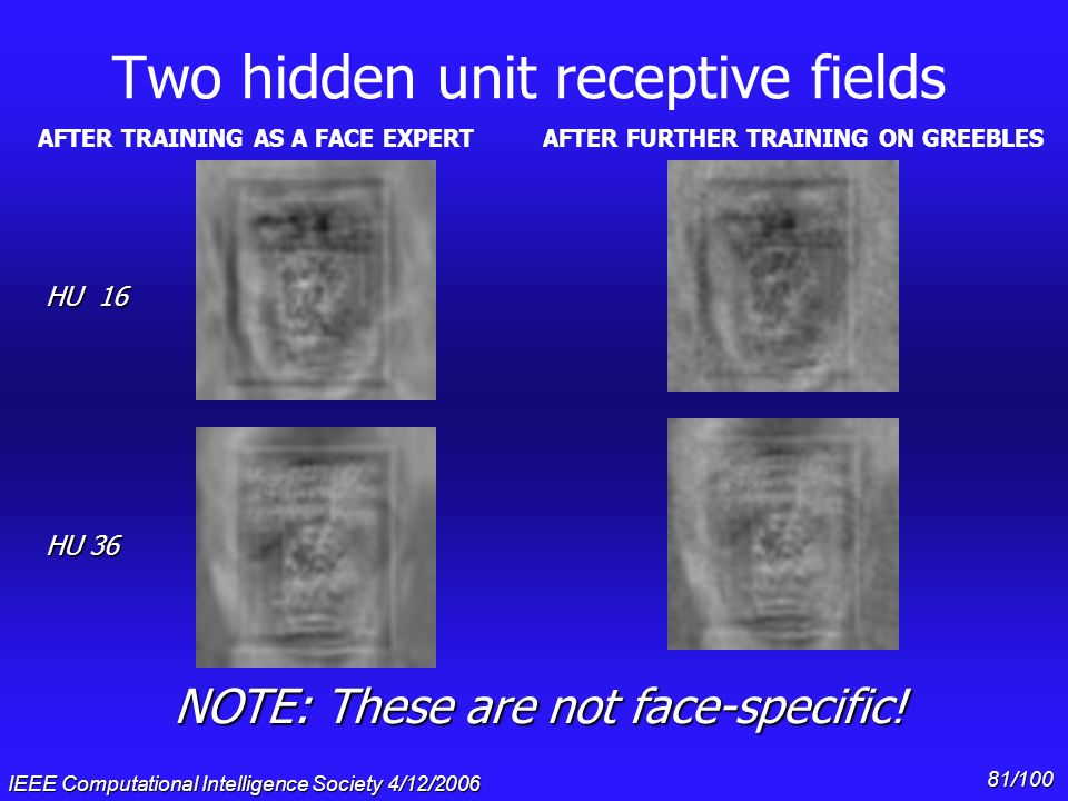 Two hidden unit receptive fields