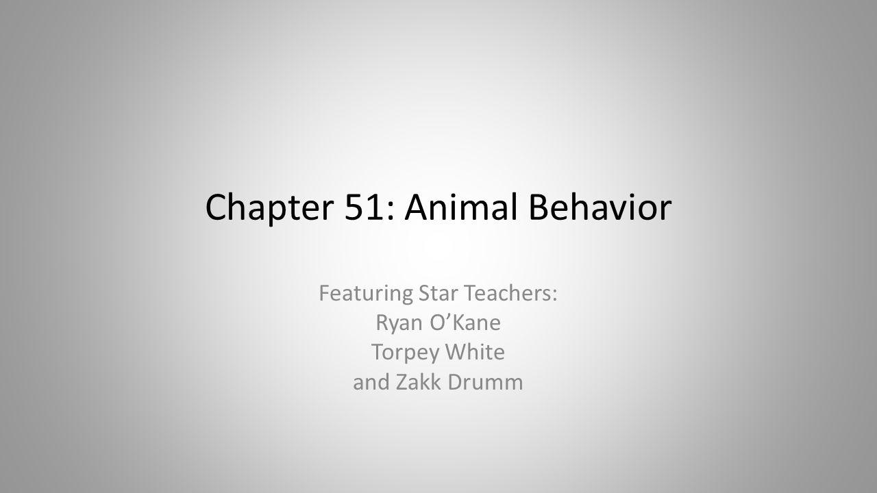 chapter 51 animal behavior ppt download rh slideplayer com Modern Biology Worksheet Answers Modern Biology Worksheet Answers