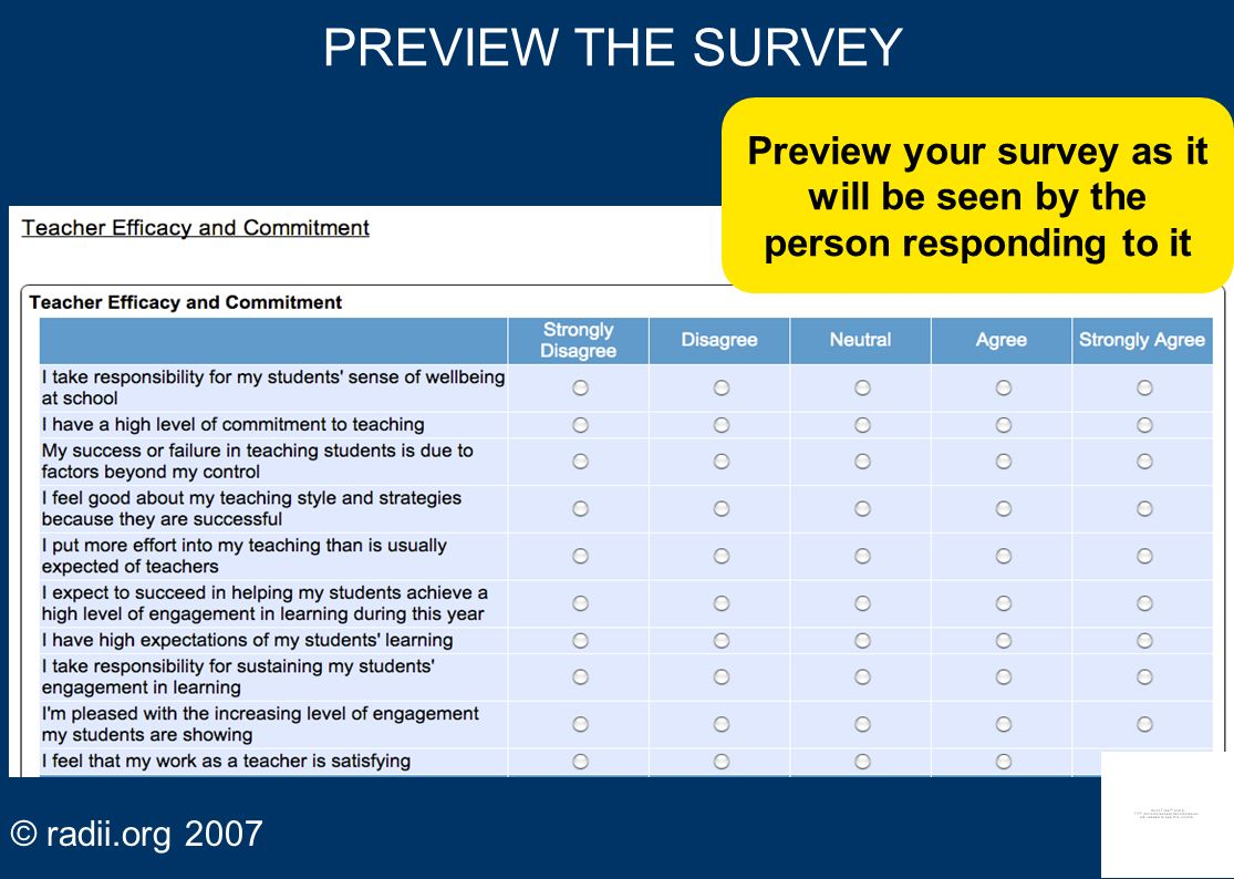 Preview your survey as it will be seen by the person responding to it