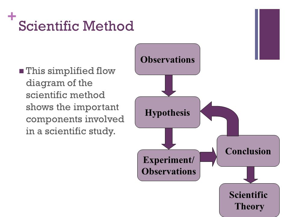 Process Of Science The Scientific Method Ppt Video Online Download
