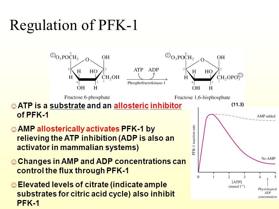 atp allosteric activator