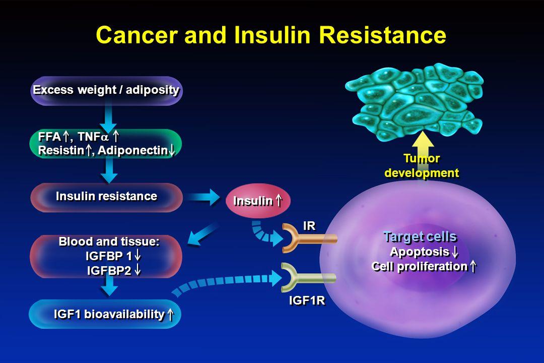 insulin resistance cancer ile ilgili görsel sonucu